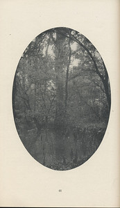 The Cypress Knee, 1929, Editor's Note, pg. 48