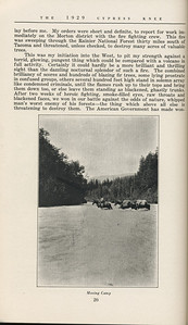 """The Cypress Knee, 1929, """"West of the Cascades"""", A. K. Thurmond Jr., """"Moving Camp"""", pg. 20"""