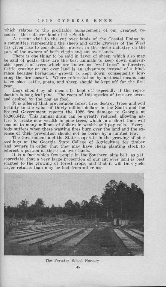 """The Cypress Knee, 1930, """"A Business View of the Cut Over Lands of the South"""", Dupre Barrett, """"The Forestry School Nursery"""", pg. 45"""