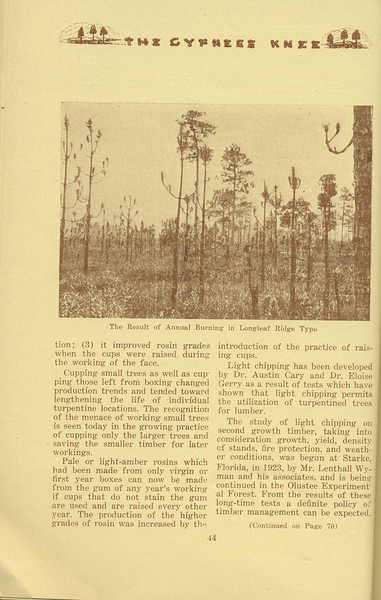 """The Cypress Knee, 1934, """"Some Developments and Trends in the Production of Naval Stores"""" (continued), G. P. Shingler, """"The Result of Annual Burning in Longleaf Ridge Type"""", pg. 44"""