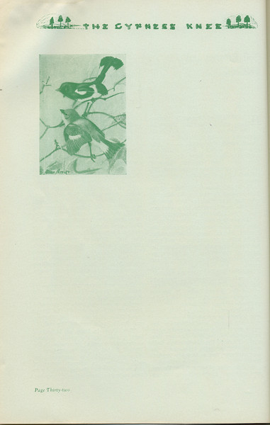The Cypress Knee, 1935, Image of birds, pg. 32