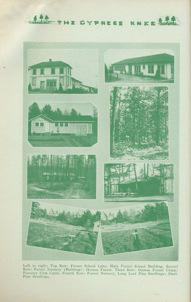 The Cypress Knee, 1935, Images of Forest School Campus, pg. 20