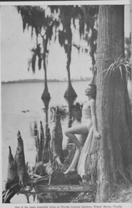 "The Cypress Knee, 1938, ""One of the Many Beautiful Views at Florida Cypress Gardens"", pg. 2"
