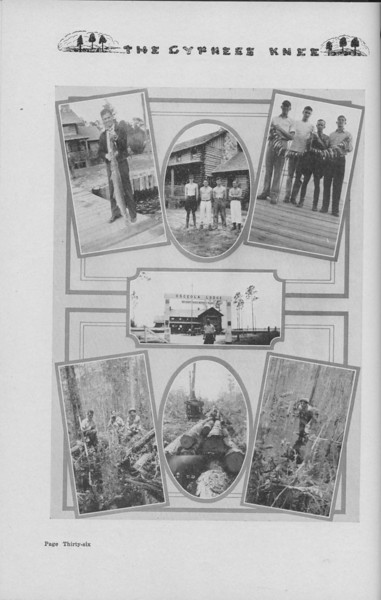 The Cypress Knee, 1938, Photo Collage, pg. 36