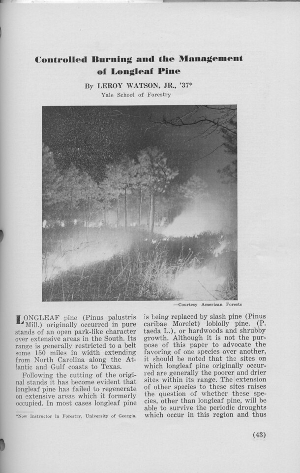 """The Cypress Knee, 1940, """"Controlled Burning and the Management of Longleaf Pine"""", Leroy Watson, pg. 43"""