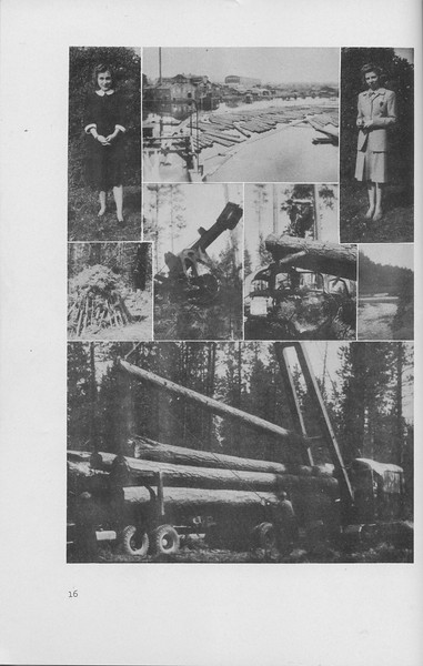 The Cypress Knee, 1942, Collage, pg. 16