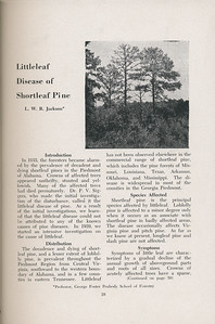 "The Cypress Knee, 1947, ""Littleleaf Disease of Shortleaf Pine"", L. W. R. Jackson, pg. 28"