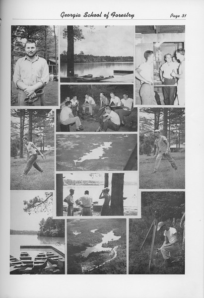 The Cypress Knee, 1950, Photo Collage, pg. 31
