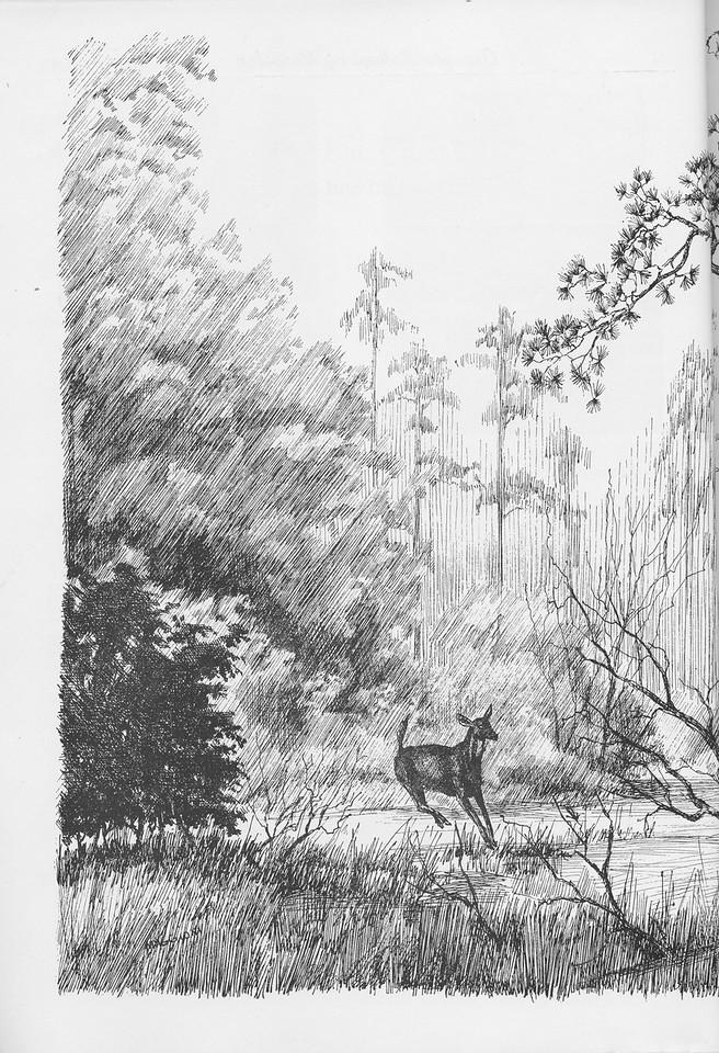 The Cypress Knee, 1950, pg. 8