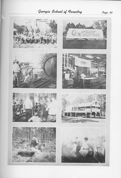 The Cypress Knee, 1951, Photo Collage, pg. 33