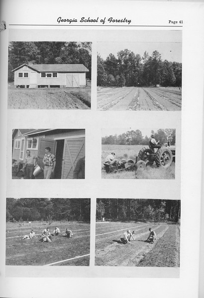 The Cypress Knee, 1952, Forestry Photo Collage, pg. 41