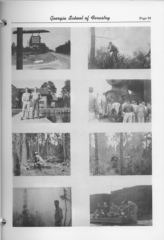 The Cypress Knee, 1952, Photo Collage, pg. 29