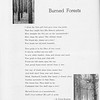"The Cypress Knee, 1952, ""Burned Forests"", S. Omar Barker, pg. 22"