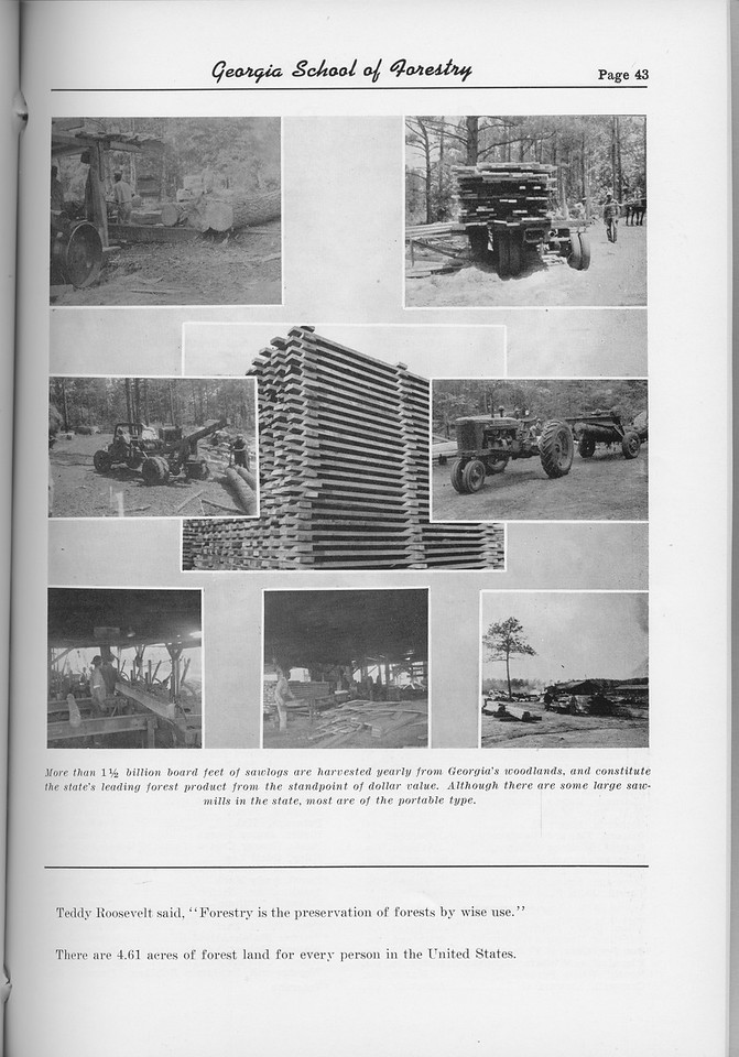 The Cypress Knee, 1954, Forestry Harvesting, pg. 43