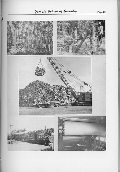 The Cypress Knee, 1954, Logging Photos, pg. 39