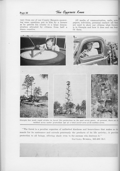 "The Cypress Knee, 1954, ""Georgia's Greatest Renewable Resources"", Guyton DeLoach, pg. 36"