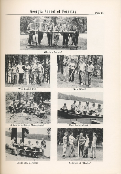 The Cypress Knee, 1955, Photo Collage, pg. 21