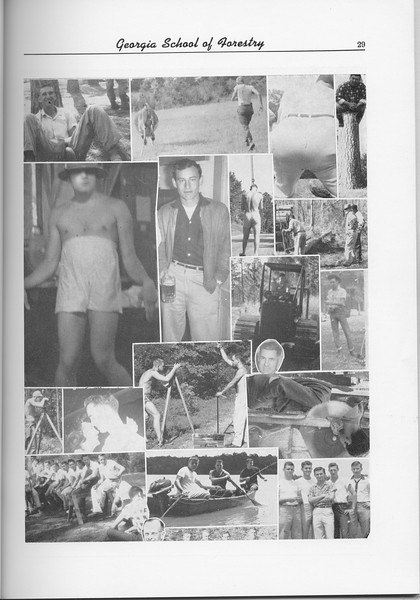 The Cypress Knee, 1956, Photo Collage, pg. 29