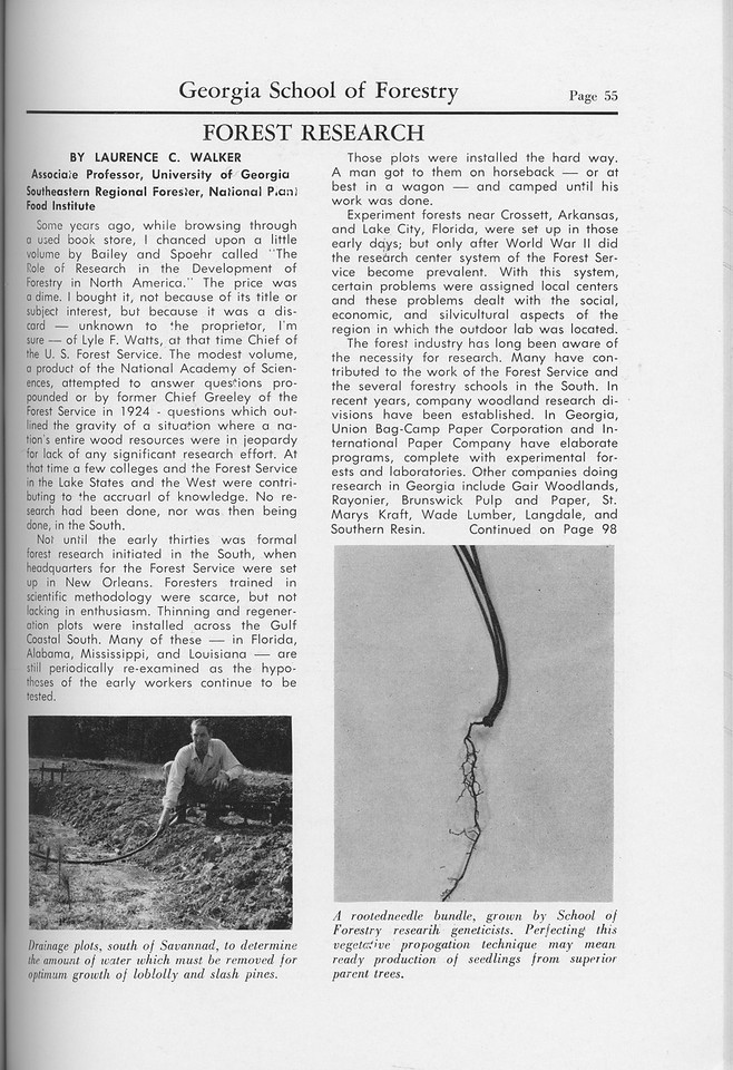 """The Cypress Knee, 1959, """"Forest Research"""", Laurence C. Walker, pg. 55"""