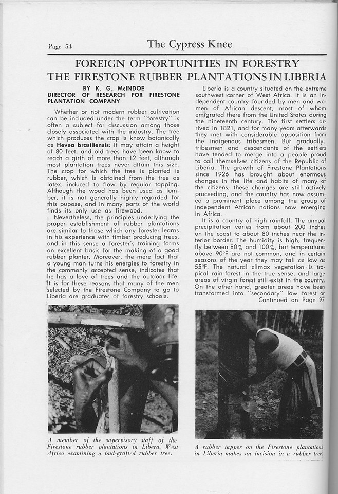 """The Cypress Knee, 1959, """"Foreign Opportunities In Forestry- The Firestone Rubber Plantations in Liberia"""", K. G. McIndoe, pg. 54"""