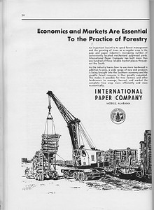 The Cypress Knee, 1960, International Paper Company, pg. 30