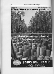 The Cypress Knee, 1960, Union-Bag Camp Paper Corporation, pg. 36