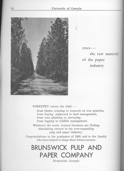 The Cypress Knee, 1963, Brunswick Pulp and Paper Company, pg. 50