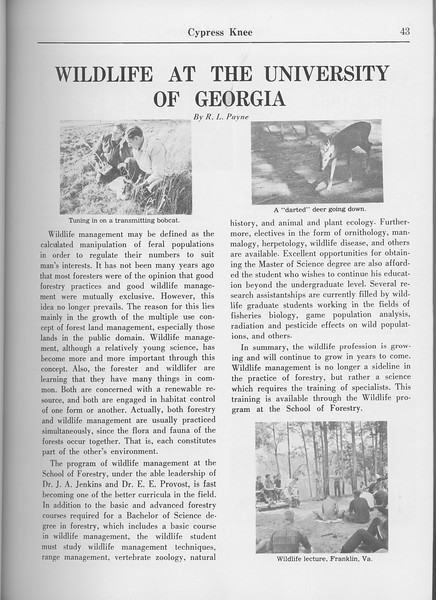 "The Cypress Knee, 1965, ""Wildlife at the University of Georgia"", R. L. Payne, pg. 43"