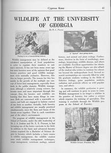 "The Cypress Knee, 1965, ""Wildlife at the University of Georgia"", R. L. Payne, pg. 43"