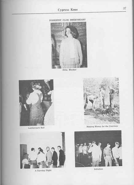The Cypress Knee, 1965, Photo Collage, pg. 37