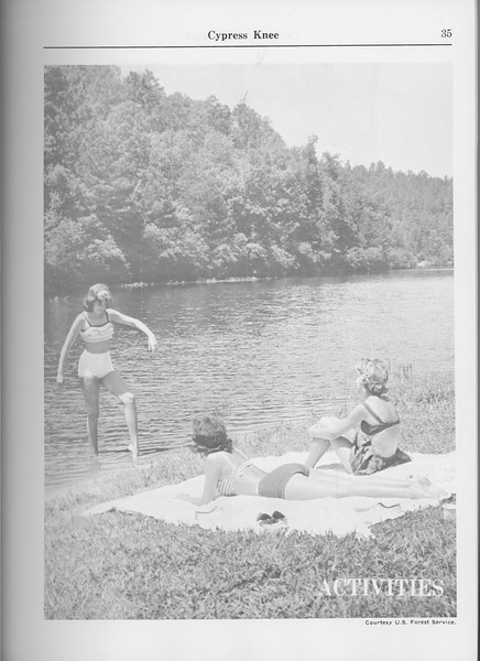 The Cypress Knee, 1965, Introduciton to Activities, pg. 35