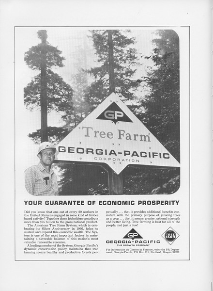 The Cypress Knee, 1966, Georgia Pacific- The Growth Company, pg. 58