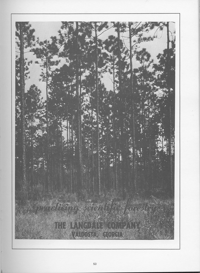 The Cypress Knee, 1968, The Langdale Company, pg. 53