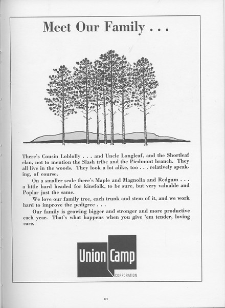 The Cypress Knee, 1968, Union Camp Corporation, pg. 61