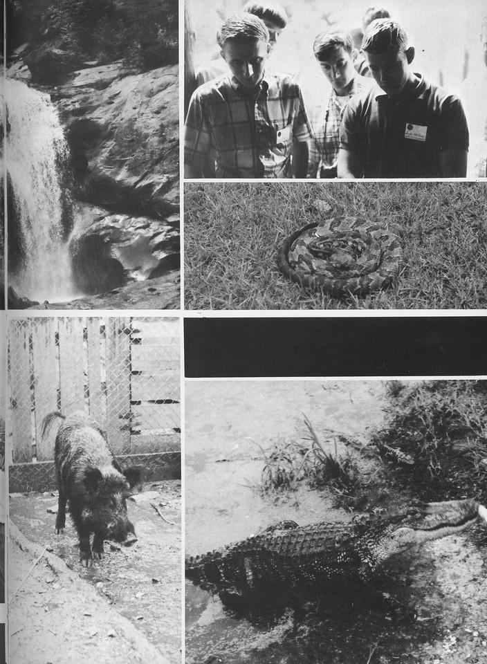 "The Cypress Knee, 1970, ""School Scenes"", pg. 55"
