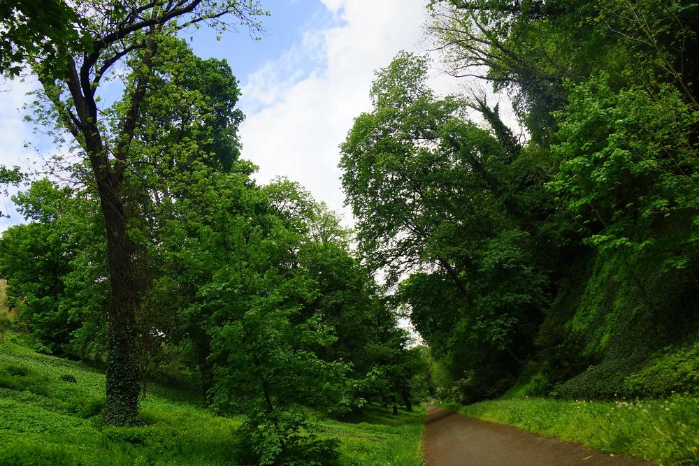 Scenic Jeleni Prikop Park