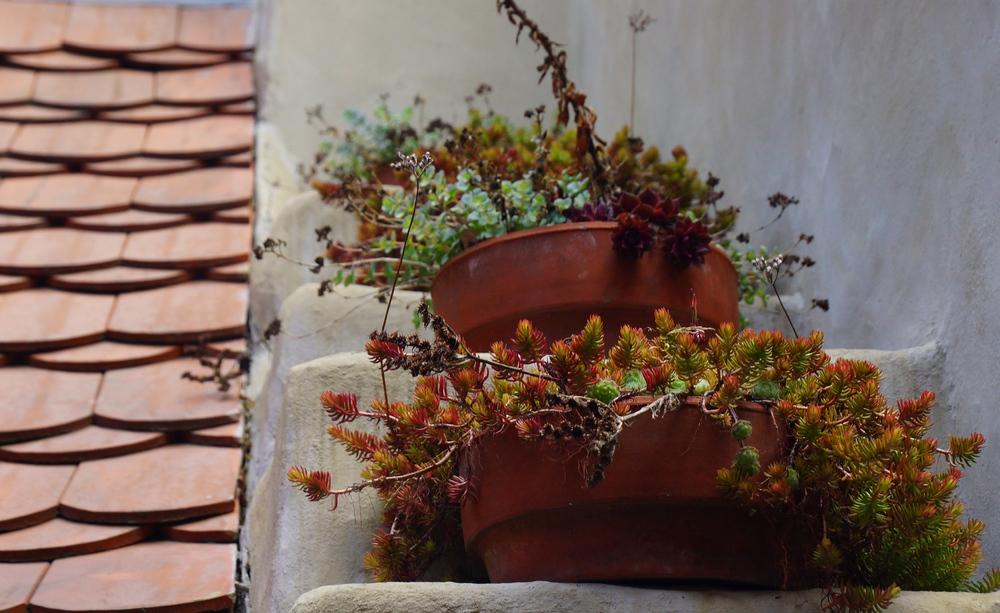 Flowerpots along the Golden Lane in Prague