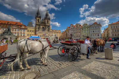 Carriage Horses In Old Town Square, Prague