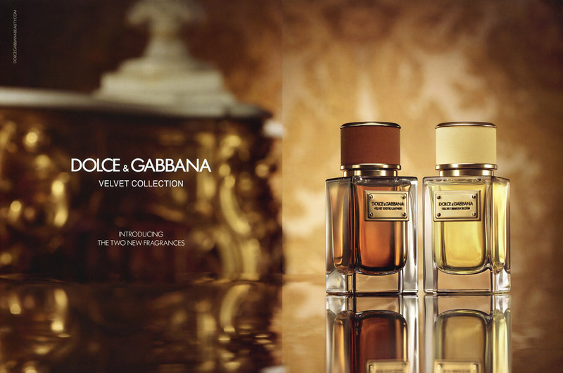 DOLCE & GABBANA Velvet Collection (Exotic Leather & Mimosa Bloom) 2015 Hong Kong spread 'Introducing the two new fragrances'