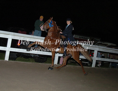 CLASS 29 AMATEUR HOW PLEASURE WALKING HORSE SPEC