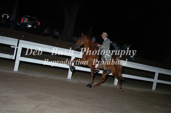 CLASS 21-  4 YR OLD OPEN SPECIALTY