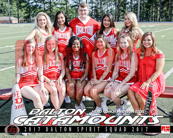 A5 - DALTON FOOTBALL TEAM PHOTO 2017