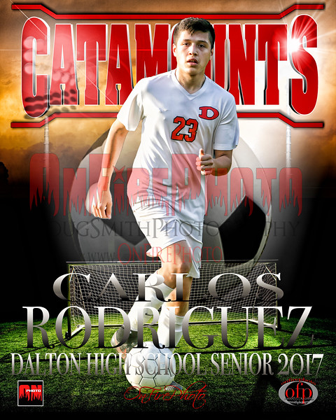 A3 - DALTON SOCCER BANNERS - POSTERS 2017