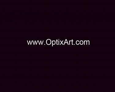 OptixArt - web address-1 White Text