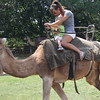 Camel rides for everyone....$5, otherwise Grant's Farm is free.