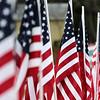 111114-DB-Veterans-Days-204