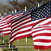 111115-VeteransDay-DB-245