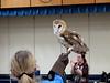 032017-BlanfordNatureCtr_Owls-DB-jm-153