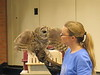032017-BlanfordNatureCtr_Owls-DB-jm-046
