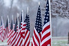 110918-VeteransDay-DB_58U0496-007